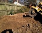 Richmond Stump Removal Contractor