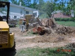 Benefits-of-Stump-Grinding-in-Richmond