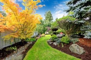 Sandston Tree Removal Company