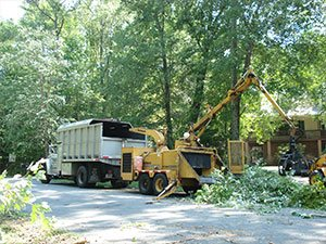 Tree Removal - C.S. Flournoy Inc.